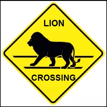 LionCrossing